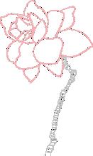 valentina_flower